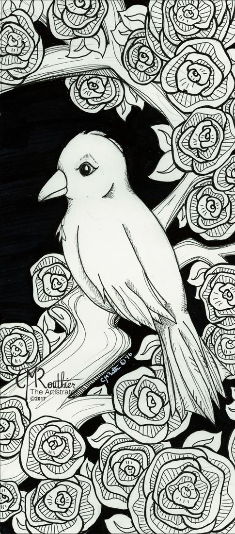 2016_RoseBUSH Bird_CMROUTHIER THUMB
