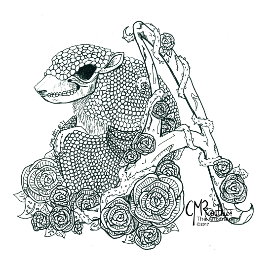 2017_A is for Armadillo